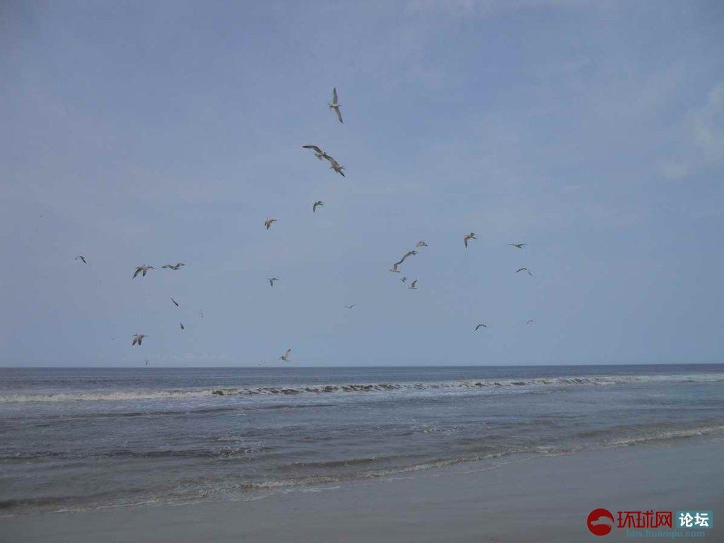 在非洲海岸体验人和自然(2)