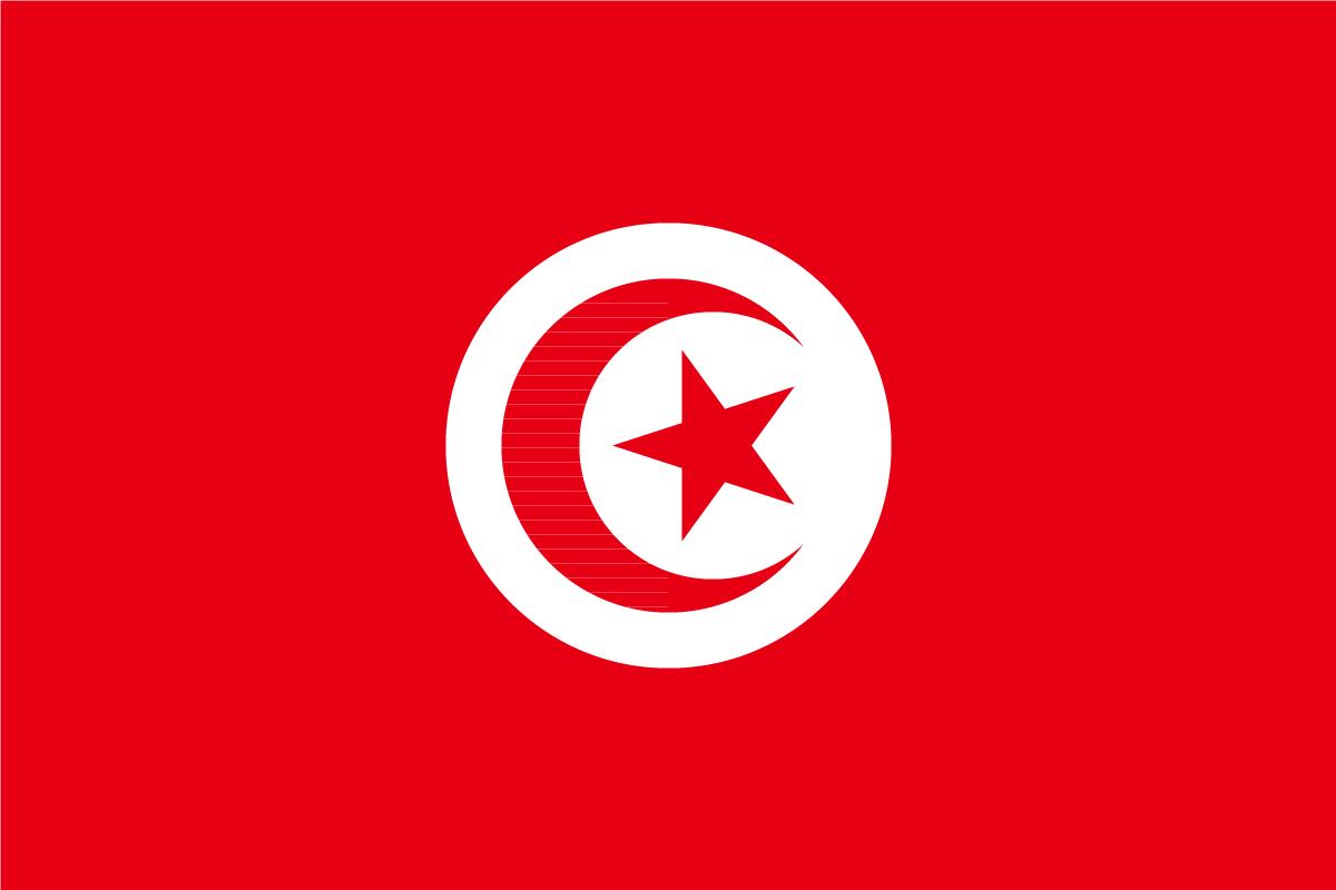 傣族国旗标志图案