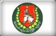 缅甸联邦巩固与发展党