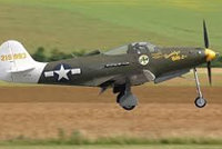 """P-39""""空中眼镜蛇"""""""