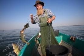 捕鱼的渔夫