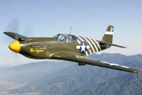 "P-51A""野马"""