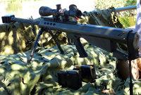 贝尔塔95M型步枪