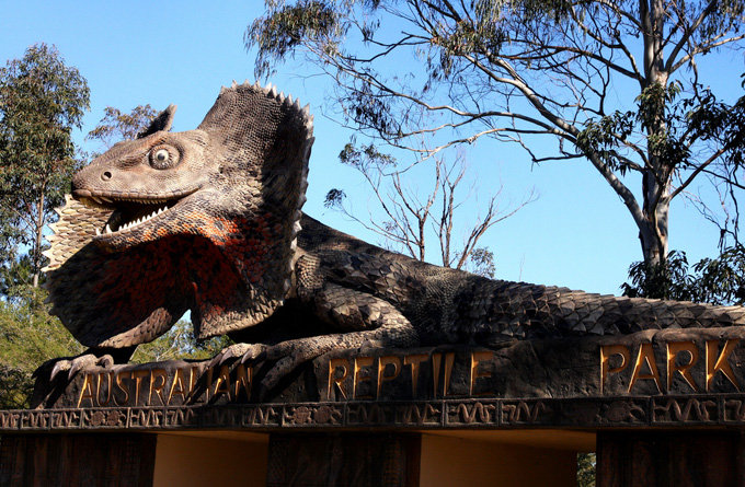 6分 概述   这里还有澳洲最大的爬行动物公园,成立于1948年,园内四处