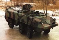 """""""锯脂鲤""""装甲人员运输车"""