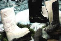 阿克顿ECW热靴
