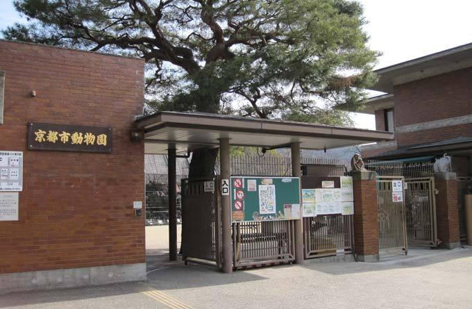 京都市动物园_京都_日本_环球旅行_环球网