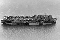 AVG-1/长岛号/LongIsland