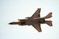 雅克-11