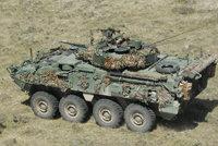 """""""野牛""""装甲人员运输车"""