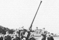"""""""博福斯""""M/36L/60式40毫米高射炮"""