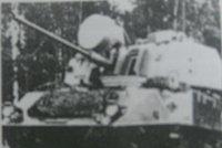 """""""特里尼蒂""""40毫米自行高射炮"""
