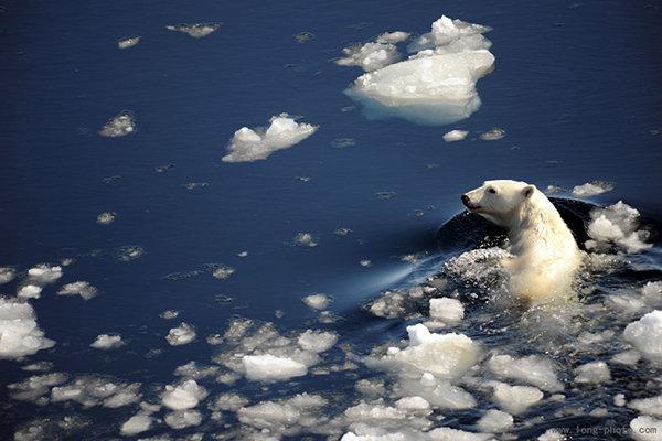北极三岛22日探险摄影团 北京出发